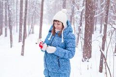 Mujer embarazada de la muchacha en bosque del invierno Fotos de archivo libres de regalías