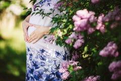 Mujer embarazada de los jóvenes contra árbol floreciente en primavera foto de archivo