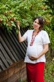 Mujer embarazada del ucraniano en camisa bordada tradicional Foto de archivo
