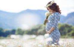 Mujer embarazada en campo con el manojo de margaritas Fotografía de archivo