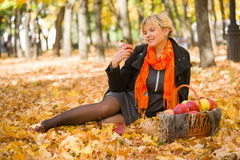 Mujer embarazada en parque del otoño Imagen de archivo