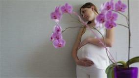 Mujer embarazada en una blusa blanca y los pantalones que se colocan cerca de la pared gris y del vientre grande de las caricias almacen de video