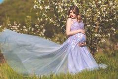 Mujer embarazada feliz en jardín del flor de la manzana Foto de archivo