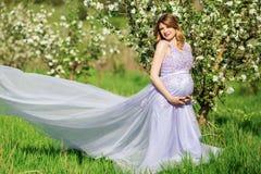 Mujer embarazada feliz en jardín del flor de la manzana Foto de archivo libre de regalías