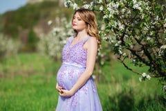 Mujer embarazada feliz en jardín del flor de la primavera Imagen de archivo