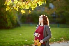 Mujer embarazada hermosa al aire libre en un día de la caída imágenes de archivo libres de regalías