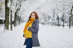 Mujer embarazada hermosa que camina en parque del invierno imagen de archivo libre de regalías