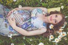 Mujer embarazada hermosa que miente en el campo de la manzanilla Fotografía de archivo