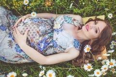 Mujer embarazada hermosa que miente en el campo de la manzanilla Fotos de archivo