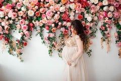 Mujer embarazada linda hermosa Fotografía de archivo