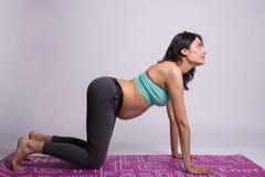 Mujer embarazada que hace yoga y estirar Fotos de archivo