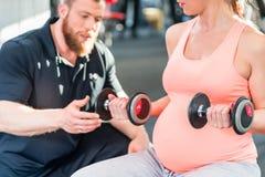 Mujer embarazada que se resuelve con pesas de gimnasia con el instructor personal Fotos de archivo libres de regalías