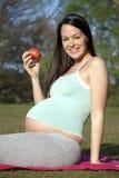 Mujer embarazada que sostiene la manzana Imagen de archivo libre de regalías