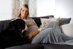 Mujer embarazada sana que miente en un sofá con su perro Foto de archivo