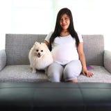 Mujer embarazada y animales domésticos lindos del perro pomeranian Imagen de archivo
