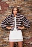 Mujer en abrigo de pieles de lujo de la chinchilla Foto de archivo libre de regalías