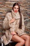 Mujer en abrigo de pieles de lujo de la chinchilla Fotos de archivo