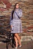Mujer en abrigo de pieles púrpura de lujo de la chinchilla Fotos de archivo libres de regalías