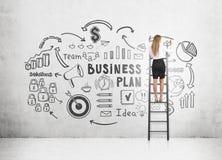 Mujer en bosquejo del plan empresarial del dibujo de la escalera fotografía de archivo libre de regalías