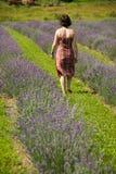 Mujer en campo Foto de archivo libre de regalías