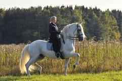 Mujer en el caballo blanco imagen de archivo libre de regalías