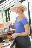 Mujer en el invernadero que pone el suelo en crisol Fotografía de archivo
