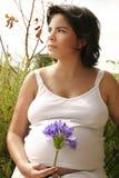 Mujer en el jardín imagen de archivo libre de regalías