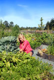 Mujer en el jardín vegetal Fotografía de archivo