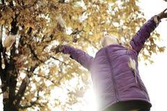 Mujer en el parque hermoso del otoño, otoño del concepto Fotos de archivo libres de regalías