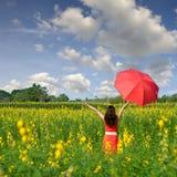 Mujer en el rojo que sostiene el paraguas rojo en campo de flor amarillo y cielo azul de la nube Foto de archivo libre de regalías