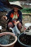 mujer en el sombrero cónico que vende caracoles en el mercado local del pueblo imagen de archivo
