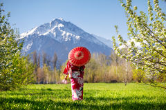 Mujer en el traje de Japón en la flor de cerezo fotos de archivo