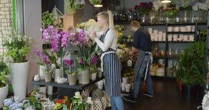 Mujer en el uniforme que trabaja en tienda floral metrajes