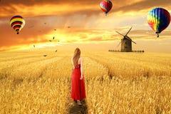 Mujer en el vestido rojo que se coloca que camina a través de campo de trigo abierto imagen de archivo libre de regalías