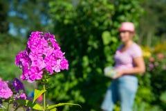 Mujer en flor y huerto Foto de archivo