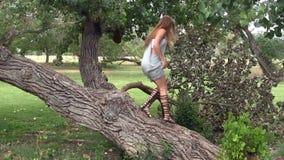 Mujer en Gray Dress And Sandals Walking en árbol en parque almacen de video