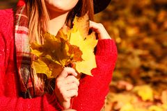 Mujer en hojas del oro de la cosecha del parque del otoño fotos de archivo libres de regalías