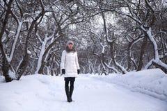 Mujer en parque del invierno Imagen de archivo