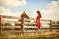 Mujer en la granja con su caballo Fotos de archivo