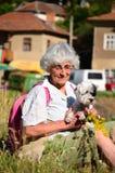 Mujer en la montaña con su perro Imagenes de archivo