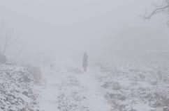 Mujer en la niebla Foto de archivo libre de regalías