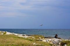 Mujer en la playa con la gaviota Imágenes de archivo libres de regalías