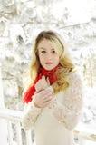 Mujer en nieve Imagen de archivo libre de regalías