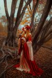Mujer en ropa medieval con un zorro imagen de archivo