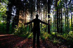 Mujer en un bosque. foto de archivo