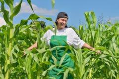 Mujer en un campo de maíz Fotografía de archivo libre de regalías
