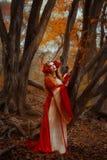 Mujer en vestido medieval rojo foto de archivo