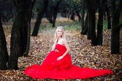 Mujer en vestido rojo en otoño del bosque del cuento de hadas de la caída foto de archivo