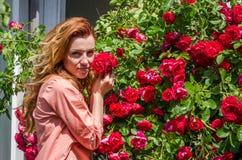 Mujer encantadora joven con la sonrisa larga del pelo feliz en el arbusto de rosas rojas Fotos de archivo libres de regalías
