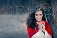 Mujer encapuchada roja que sostiene el retrato del cuento de hadas de Apple Fotos de archivo
